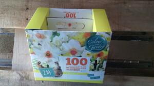 Bolbos Holanda Narcisus Cada cx contém 100 bolbos com 3 cores diferentes